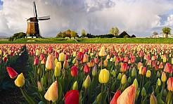 Projekt Holandia - wsparcie bezpiecznej emigracji oraz ochrona przed handlem ludźmi - Serwis informacyjny z Rybnika - naszrybnik.com