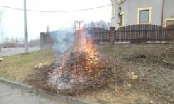 Strażnicy ukarali mandatem karnym mężczyznę, który spalał odpady zielone - Serwis informacyjny z Rybnika - naszrybnik.com