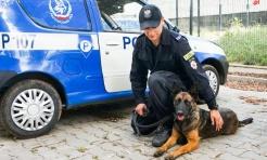 Pies patrolowo-tropiący odnalazł zaginioną kobietę - Serwis informacyjny z Rybnika - naszrybnik.com