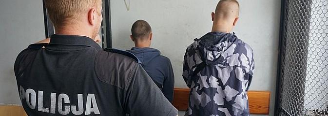 Zniszczyli 6 samochodów – zostali zatrzymani - Serwis informacyjny z Rybnika - naszrybnik.com