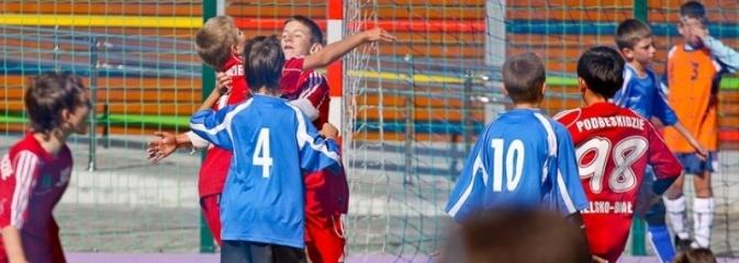 Zarząd Województwa ogłosił konkurs na realizację projektu Junior Sport  - Serwis informacyjny z Rybnika - naszrybnik.com