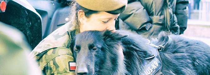 Psy będą służyć w 13. Śląskiej Brygadzie Obrony Terytorialnej - Serwis informacyjny z Rybnika - naszrybnik.com