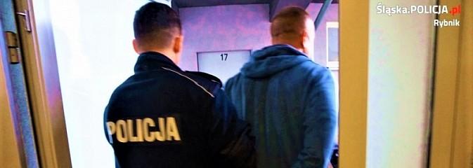 Areszt za posiadanie i udział w obrocie znacznymi ilościami amfetaminy - Serwis informacyjny z Rybnika - naszrybnik.com
