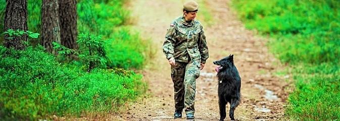 Śląscy Terytorialsi rozpoczęli nabór psów do grupy K9 - Serwis informacyjny z Rybnika - naszrybnik.com
