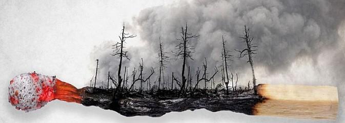 Wypalanie traw. Nielegalne i niebezpieczne! - Serwis informacyjny z Rybnika - naszrybnik.com
