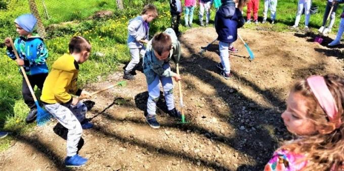 Łąka kwietna przy Przedszkolu numer 8